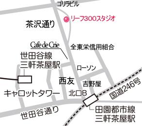 map_leaf